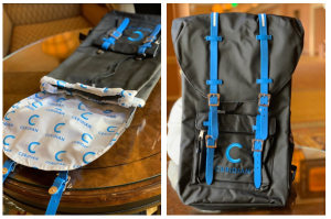 Custom Ceridian Herschel-Inspired Bag