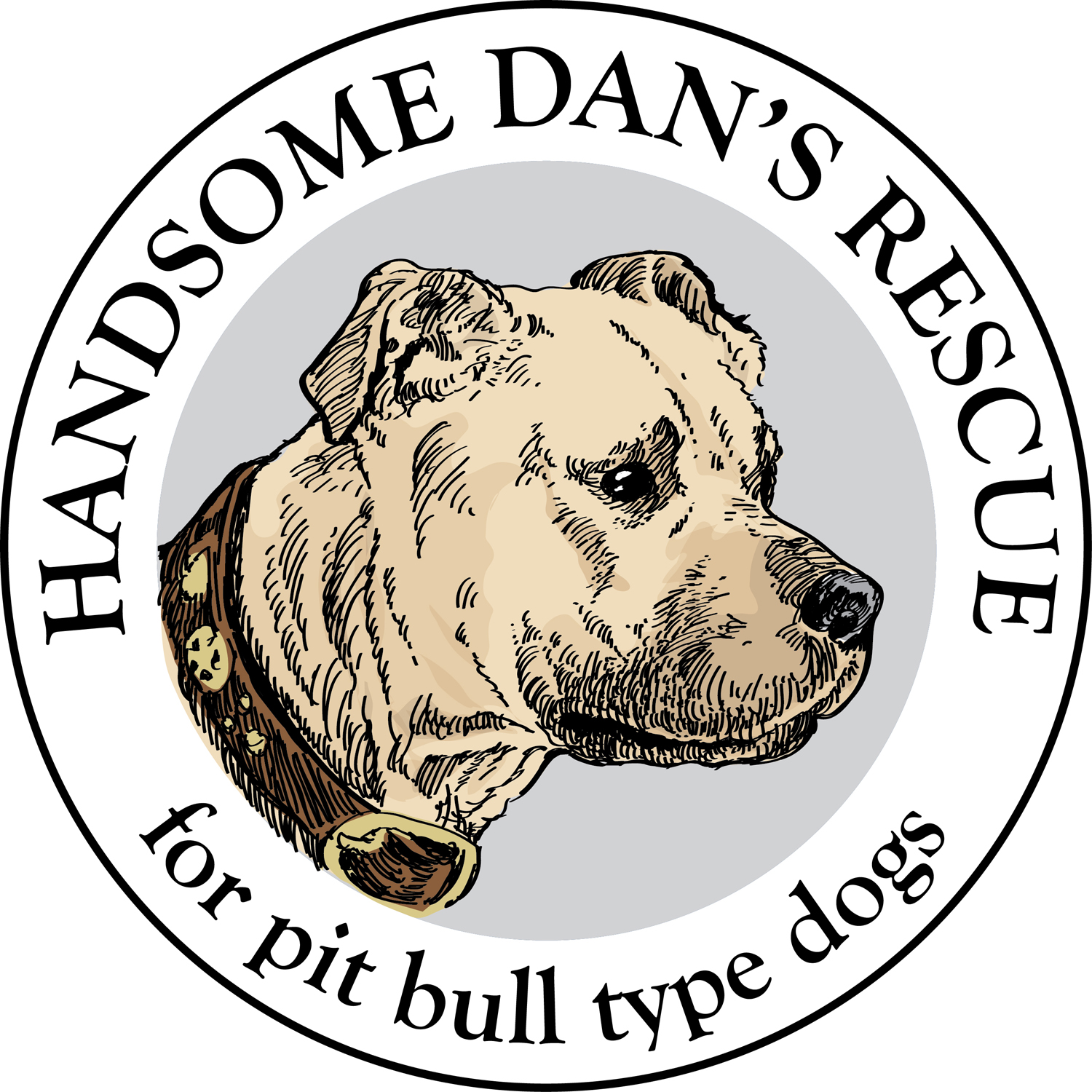 Handsome Dan's Rescue